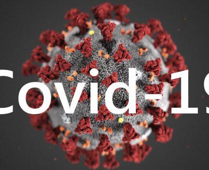 Procedura przekazania prawa do działkipodczas trwania pandemii COVID-19